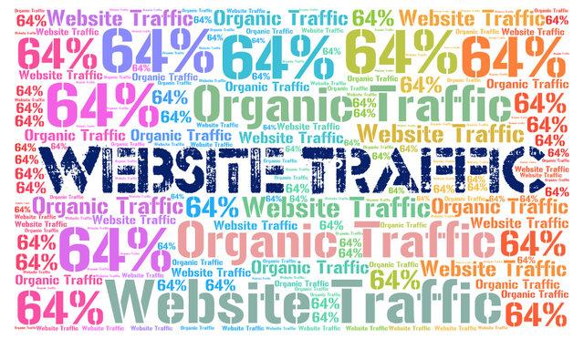Organic Search Traffic Tips