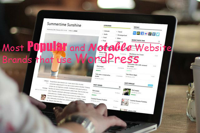 Websites that use WordPress